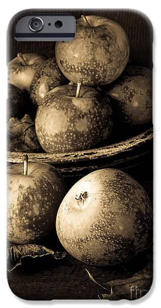 Old Masters iPhone Cases - Apple Still Life Black and White iPhone Case by Edward Fielding