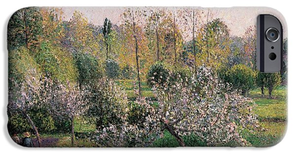 Apple Trees iPhone Cases - Apple Trees in Blossom iPhone Case by Camille Pissarro