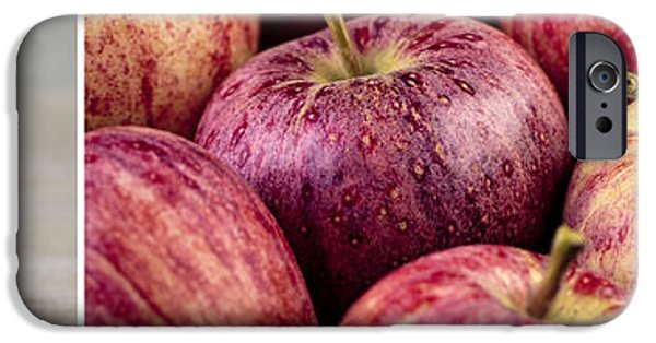 Apple Photographs iPhone Cases - Apples 02 iPhone Case by Nailia Schwarz