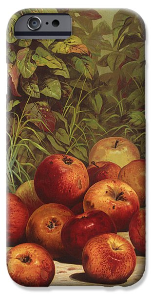Fresh Produce iPhone Cases - Apples Circa 1868 iPhone Case by Aged Pixel