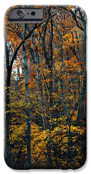 Arkansas iPhone Cases - AR Fall 12-005FP iPhone Case by Scott McAllister