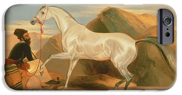 Orientalists Photographs iPhone Cases - Arab Stallion Oil On Canvas iPhone Case by Sir Edwin Landseer