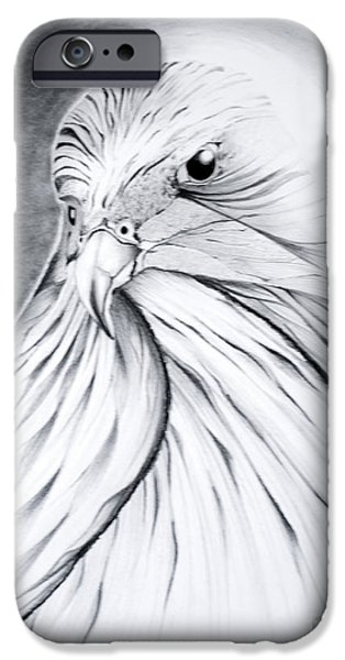 Arabian Falcon iPhone Case by Jalal Gilani