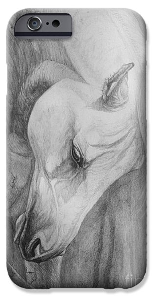Horse Artist iPhone Cases - Arabian Gentleness iPhone Case by Silvana Gabudean