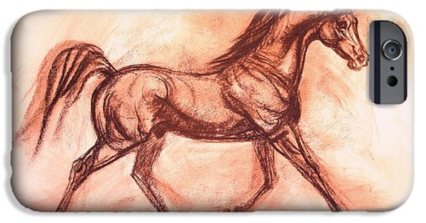 The Horse Pastels iPhone Cases - Arabian Stallion Marranas iPhone Case by Maureen Love