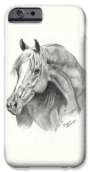 Drawing Of A Horse iPhone Cases - Arabian Stallion iPhone Case by Suzanne Schaefer