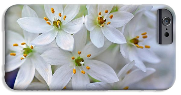 Star Of Bethlehem iPhone Cases - Arabs Eye iPhone Case by Kaye Menner