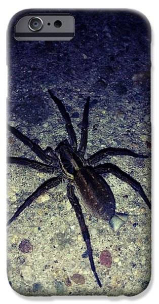 Arachne iPhone Case by Lucy D