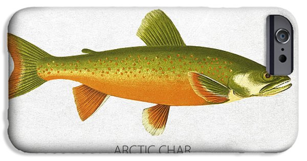 Arctic iPhone Cases - Arctic Char iPhone Case by Aged Pixel