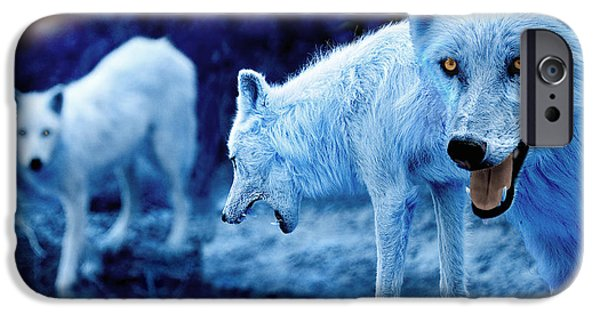 Winters iPhone Cases - Arctic White Wolves iPhone Case by Mal Bray