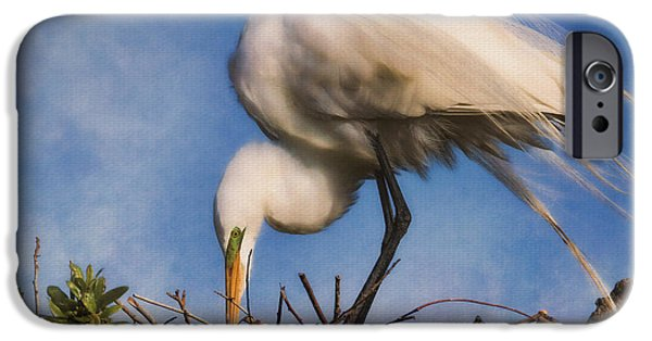 Baby Bird iPhone Cases - Are They Going To Hatch Soon iPhone Case by Deborah Benoit