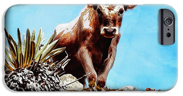 Rural Scenes Digital Art iPhone Cases - Are You Talking To Me? iPhone Case by Ayse Deniz