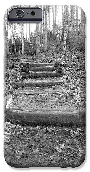 Arethusa Falls Mountain Trail iPhone Case by Catherine Reusch  Daley