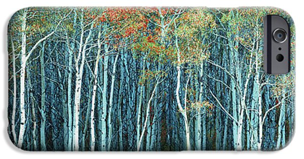 Abstract Digital Photographs iPhone Cases - Army of Trees iPhone Case by Edmund Nagele
