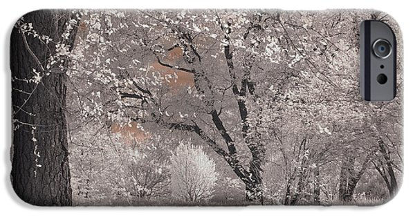 Nature Scene iPhone Cases - Arnold Arboretum in Infrared iPhone Case by Joann Vitali