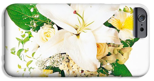 Cut-outs iPhone Cases - Arranged Flowers And Leaves On White iPhone Case by Panoramic Images