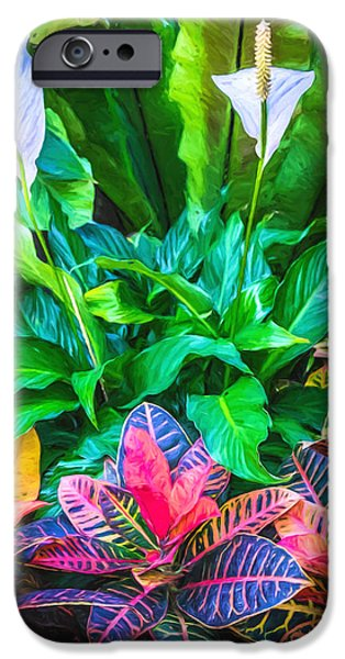 Red iPhone Cases - Arrangement of Croton and Spath iPhone Case by Duane Miller