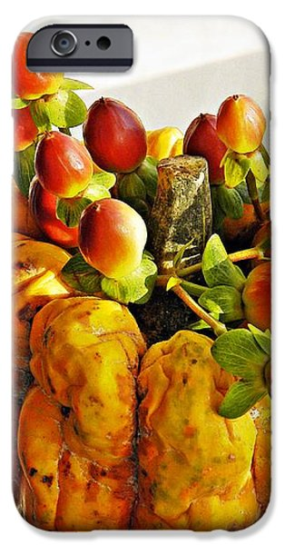 Arrangement on Squash 2 iPhone Case by Sarah Loft