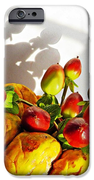 Arrangement on Squash 3 iPhone Case by Sarah Loft