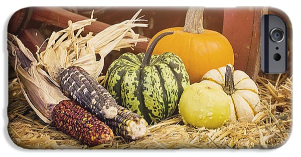 Farm Stand Photographs iPhone Cases - Arrival of Autumn iPhone Case by Heather Applegate