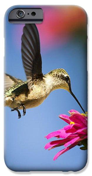 Art of Hummingbird Flight iPhone Case by Christina Rollo