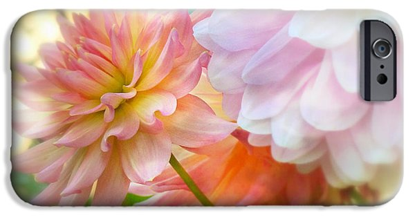 Book Cover Art iPhone Cases - Art Of The Feminine iPhone Case by Connie Handscomb