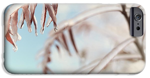 Wintertime iPhone Cases - Artistic abstract closeup of frozen tree branches iPhone Case by Oleksiy Maksymenko