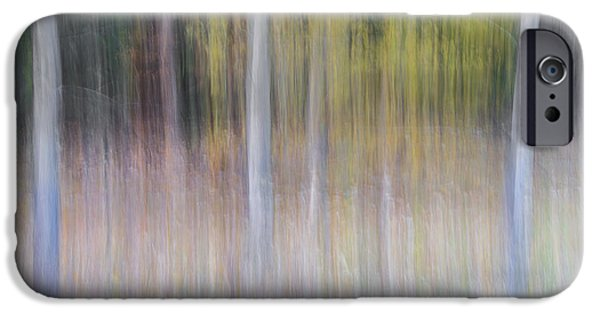 Pines iPhone Cases - Artistic Birch Trees iPhone Case by Larry Marshall