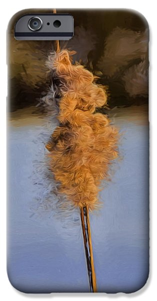 Ready To Fly iPhone Cases - Artistic painterly Reedmace ready to let seed fly in February 2015. iPhone Case by Leif Sohlman