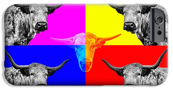 Coos iPhone Cases - Arty Coo few iPhone Case by John Farnan