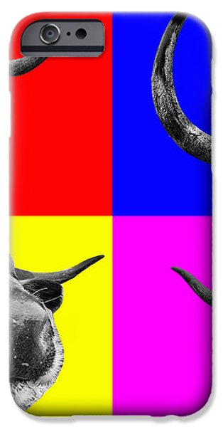 Arty Coo looking at you iPhone Case by John Farnan