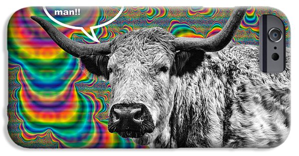 Coos iPhone Cases - Arty Coo Really Mooved iPhone Case by John Farnan