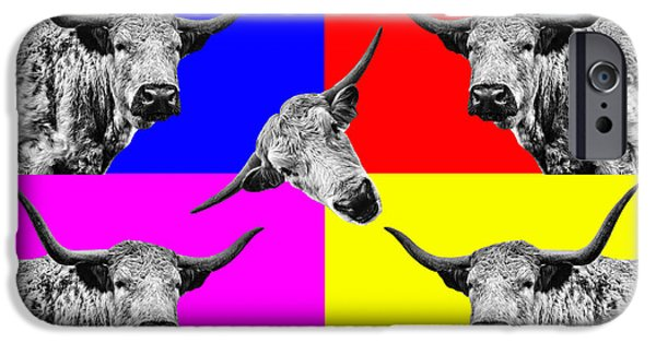 Coos iPhone Cases - Arty Coo spin me round baby iPhone Case by John Farnan