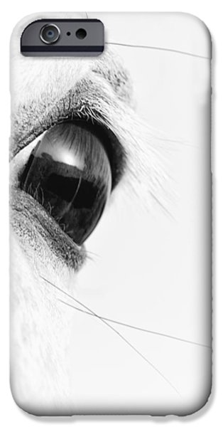 Monotone iPhone Cases - As the Sun Goes Down iPhone Case by Ron  McGinnis