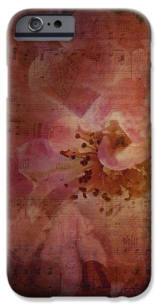 As Time Goes By iPhone Case by Lianne Schneider
