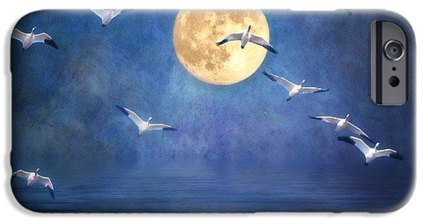 Sea Moon Full Moon iPhone Cases - Ascending iPhone Case by Lois Farrington