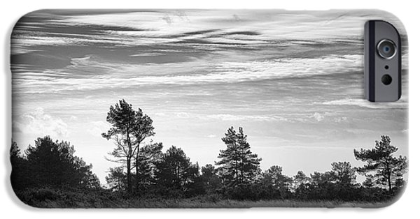 Tree Print Digital iPhone Cases - Ashdown Forest in Black and White iPhone Case by Natalie Kinnear