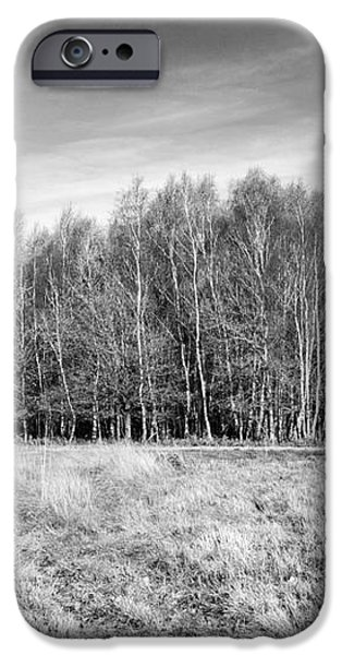 Ashdown Forest Trees in a Row iPhone Case by Natalie Kinnear