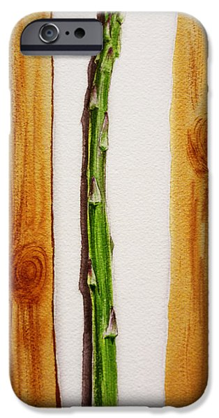 Crops iPhone Cases - Asparagus Tasty Botanical Study iPhone Case by Irina Sztukowski