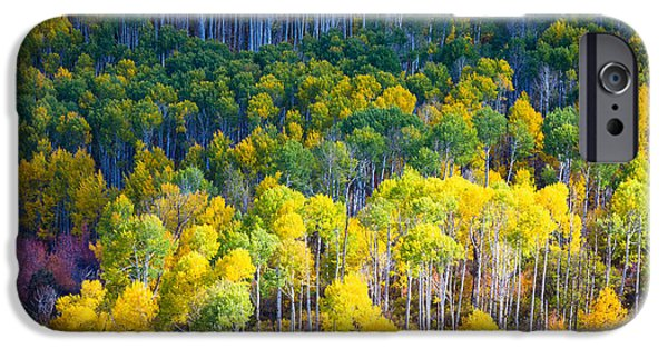 North America Photographs iPhone Cases - Aspen HIllside iPhone Case by Inge Johnsson