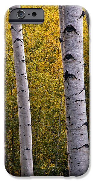 Aspen Light 2 iPhone Case by Dave Dilli