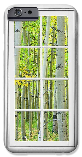 Aspen Tree Forest Autumn Time White Window View  iPhone Case by James BO  Insogna