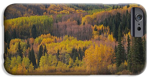 Generic iPhone Cases - Aspen Trees In A Field, Maroon Bells iPhone Case by Panoramic Images