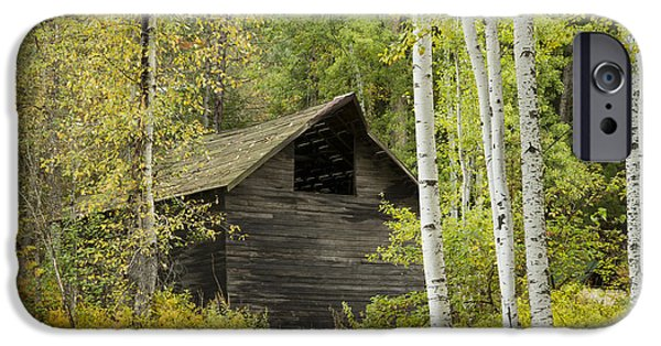 Recently Sold -  - Rural iPhone Cases - Aspens and Barn iPhone Case by Idaho Scenic Images Linda Lantzy