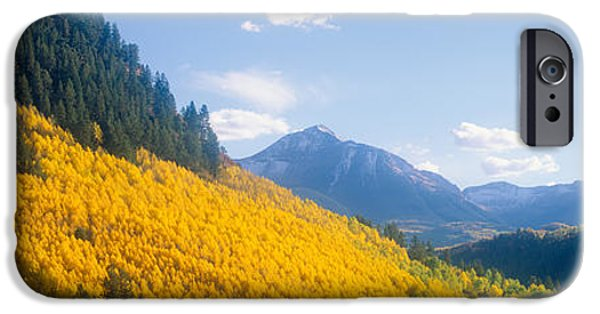 Mountain iPhone Cases - Aspens In Autumn In San Juan National iPhone Case by Panoramic Images