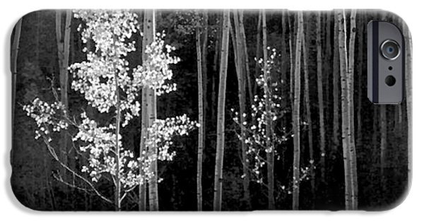 New Mexico Digital iPhone Cases - Aspens Northern New Mexico iPhone Case by Ansel Adams
