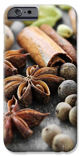 Aromatic iPhone Cases - Assorted spices iPhone Case by Elena Elisseeva
