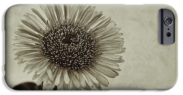 Toned iPhone Cases - Aster with Textures iPhone Case by John Edwards