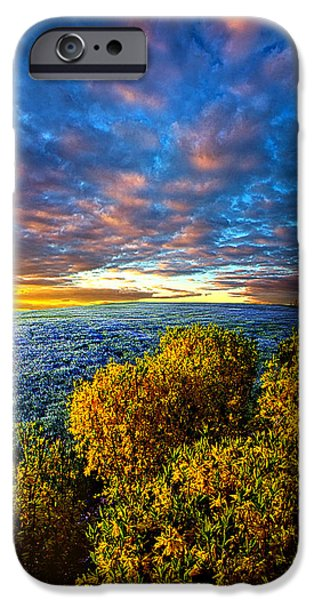 Frost Photographs iPhone Cases - At Peace in Morning Solitude iPhone Case by Phil Koch