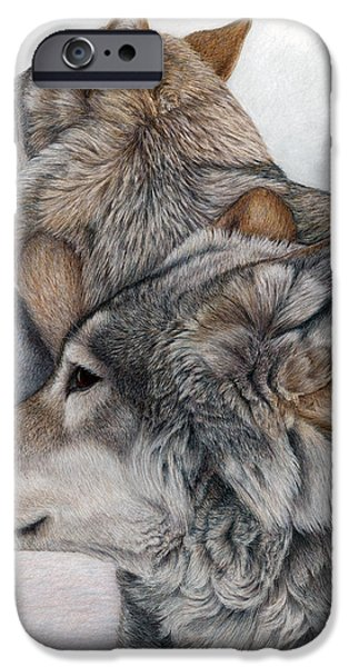 Colored Pencils iPhone Cases - At Rest But Ever Vigilant iPhone Case by Pat Erickson